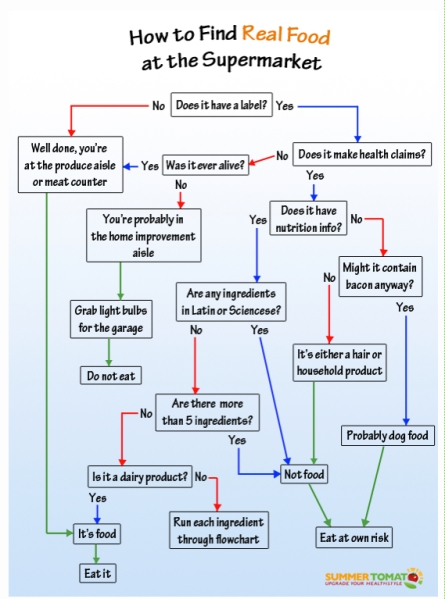 Food flow chart
