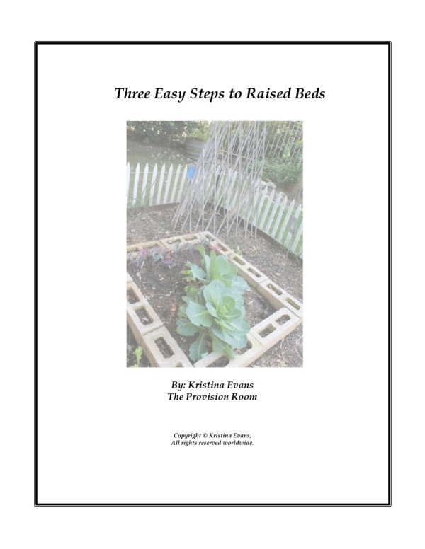 3 Easy Steps Cover Page